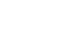 professional-logo-azeemhussain.pk