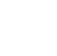 values-logo designing